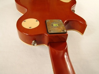 Lidia guitar top edge back Picture