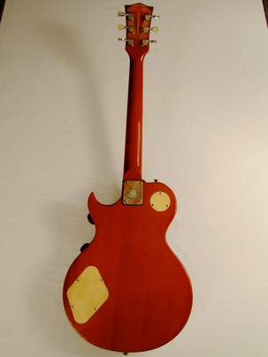 Lidia guitar full back Picture